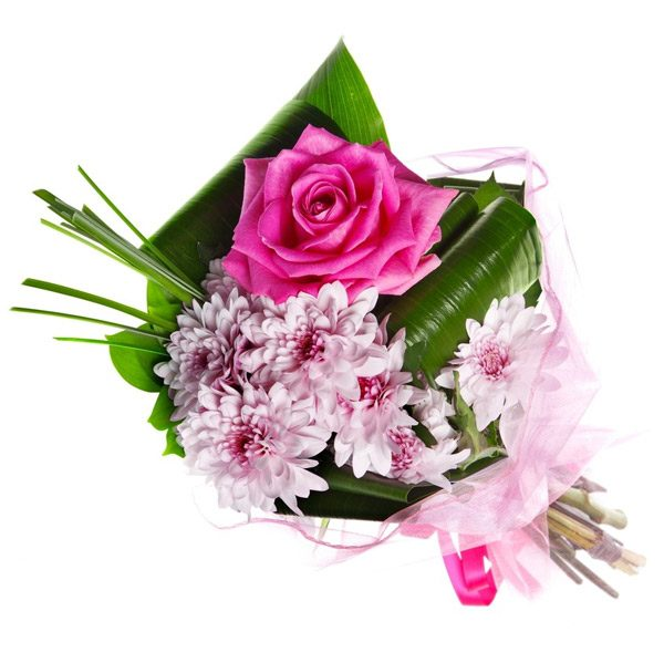 Single Pink Rose Compact Bouquet Auckland Flowers