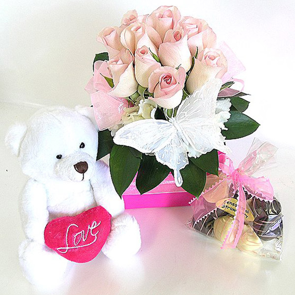Pretty pink roses in box with teddy bear auckland flowers mightylinksfo