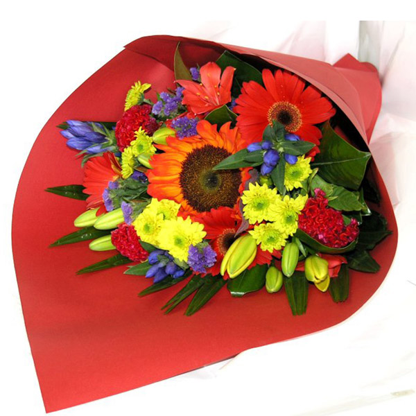 Red yellow blue vibrant bouquet auckland flowers mightylinksfo