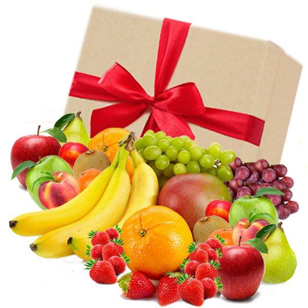 Fruit Box Large